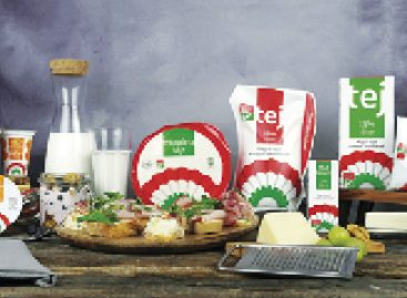 Successful Kokárdás dairy products