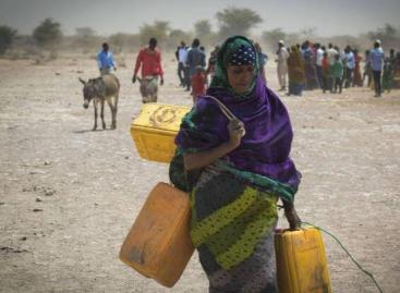 Természeti katasztrófák tépázzák az agrár-élelmezési rendszereket