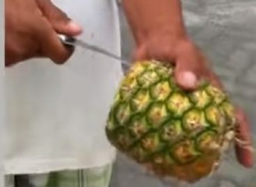 Érintésmentes ananásztisztítás – A nap videója
