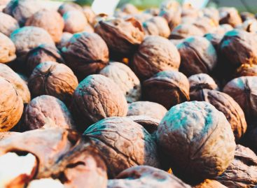 Wine and walnut prices grew significantly