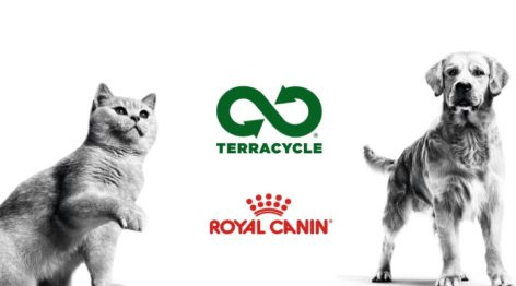 """Ötvenötmillió kutya- és macskatápzacskót """"spórol meg"""" a Royal Canin"""
