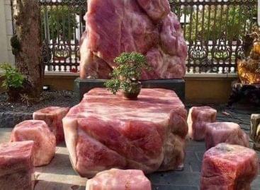 És a húsimádók hová üljenek? – A nap képe