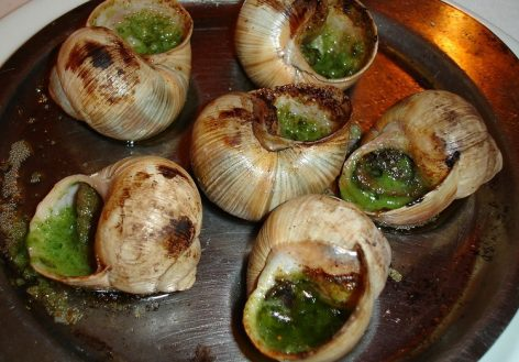 It is not easy for French snail breeders