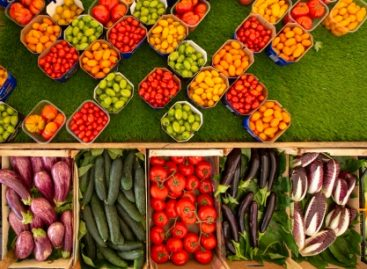 We are what we eat: Transforming diets to transform agri-food systems