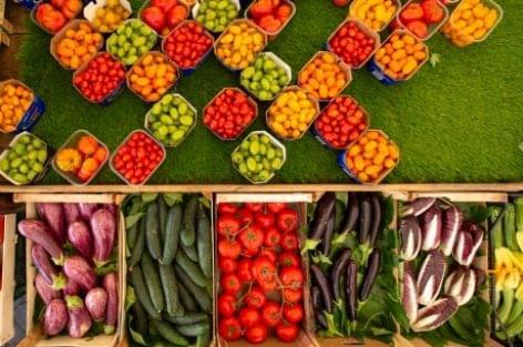 A FAO szakértői segítenek megérteni a bélflóra működését – a táplálkozástól a környezeti hatásokig