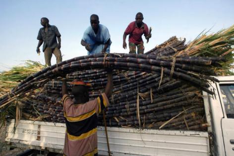 FAO: További emelkedést hozott április a nemzetközi élelmiszerárak terén