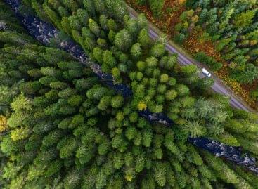 Új lehetőség a magyar vásárlóknak nettó karbonlábnyomuk csökkentésére