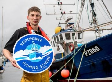 Aldi UK Launches Fish Range To Support British Fishing Industry