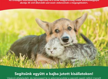 Pet food collection in INTERSPAR stores