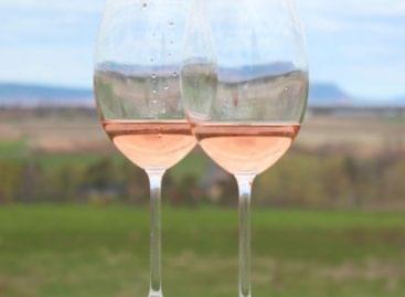 Remekül szerepeltek a kunsági borok a világ legnagyobb presztizsű roséversenyén
