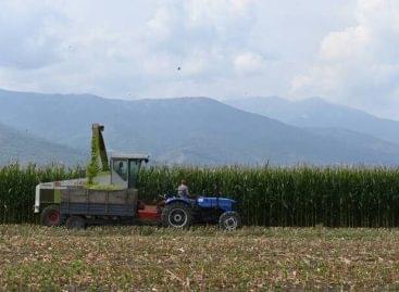 FAO: Meredeken emelkedtek májusban az élelmiszerárak
