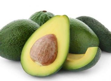 Egyre nő az avokadó népszerűsége