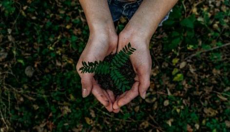 Felfelé ívelő pályán az ökológiai gazdálkodás Magyarországon