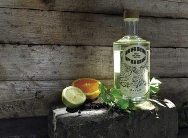 Komlózott kraft gin