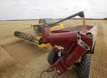 Újra drágulás a nemzetközi élelmiszerárakban