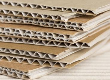 5 hihetetlen megoldás a legkörnyezetkímélőbb csomagolóanyagból