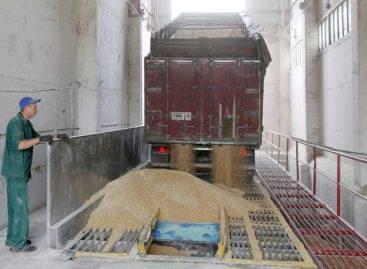 FAO: Szeptemberben drágult a nemzetközi élelmiszerkosár