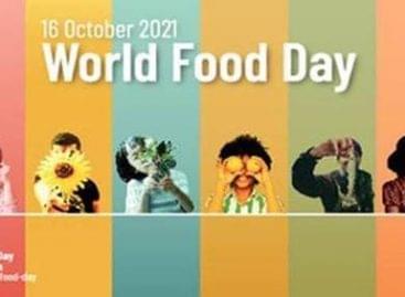 Mi várható az élelmezési világnap (október 16.) hetén a fővárosban?